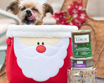 Product Review: Nature's Logic Dog & Cat Feasts